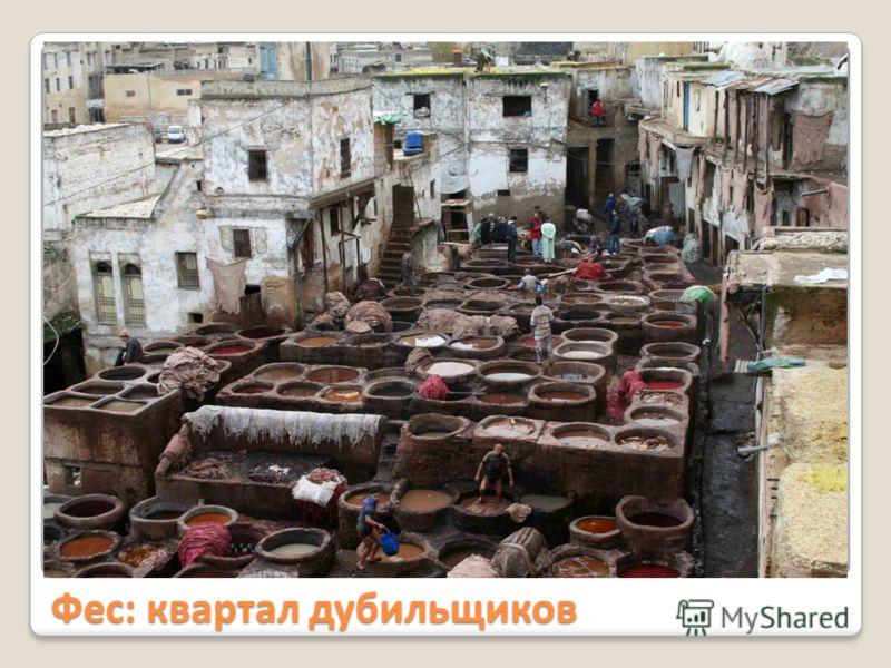 Фес: квартал дубильщиков
