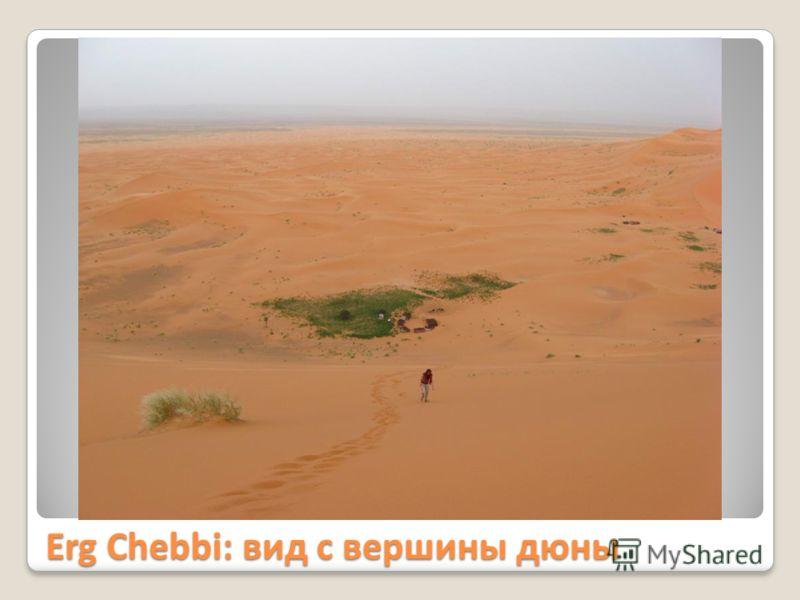 Erg Chebbi: вид с вершины дюны