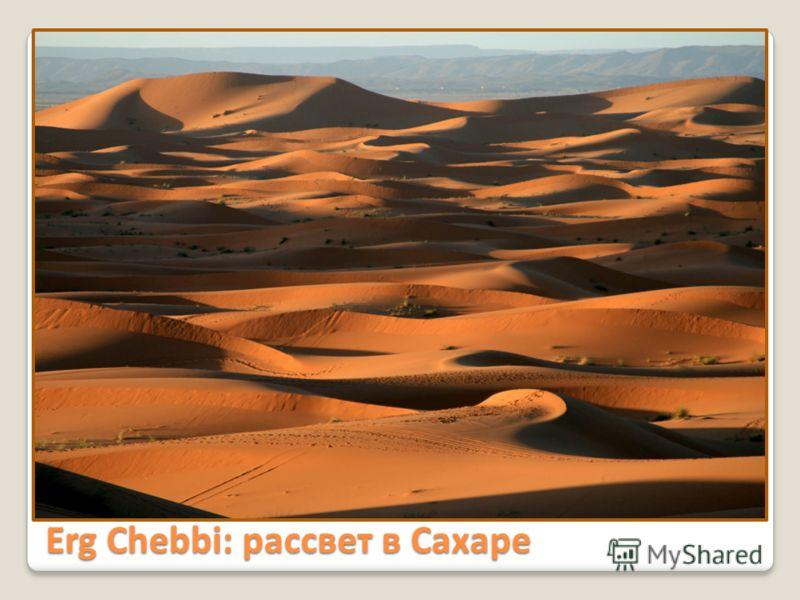 Erg Chebbi: рассвет в Сахаре