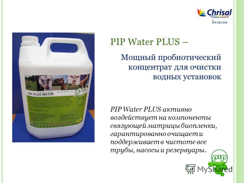 Бельгия PIP Water PLUS – Мощный пробиотический концентрат для очистки водных установок PIP Water PLUS активно воздействует на компоненты связующей матрицы биопленки, гарантированно очищает и поддерживает в чистоте все трубы, насосы и резервуары.