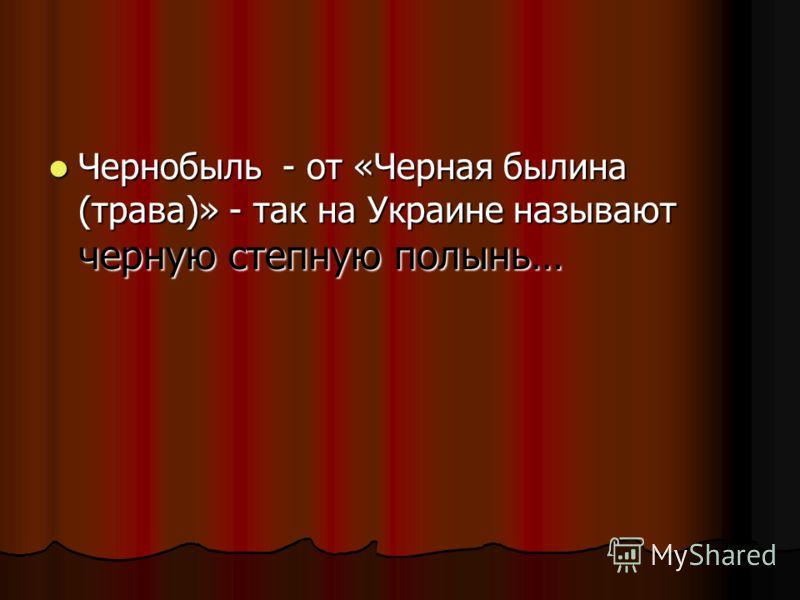Чернобыль - от «Черная былина (трава)» - так на Украине называют черную степную полынь… Чернобыль - от «Черная былина (трава)» - так на Украине называют черную степную полынь…