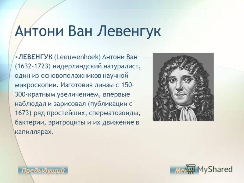 Антони Ван Левенгук ЛЕВЕНГУК (Leeuwenhoek) Антони Ван (1632-1723) нидерландский натуралист, один из основоположников научной микроскопии. Изготовив линзы с 150- 300-кратным увеличением, впервые наблюдал и зарисовал (публикации с 1673) ряд простейших,