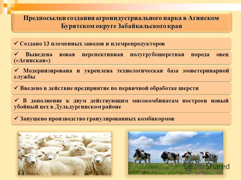 Создано 13 племенных заводов и племрепродукторов Выведена новая перспективная полугрубошерстная порода овец («Агинская») Модернизирована и укреплена технологическая база зооветеринарной службы Введено в действие предприятие по первичной обработке шер