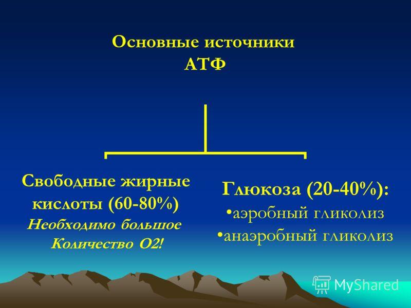 Основные источники АТФ Свободные жирные кислоты (60-80%) Необходимо большое Количество О2! Глюкоза (20-40%): аэробный гликолиз анаэробный гликолиз