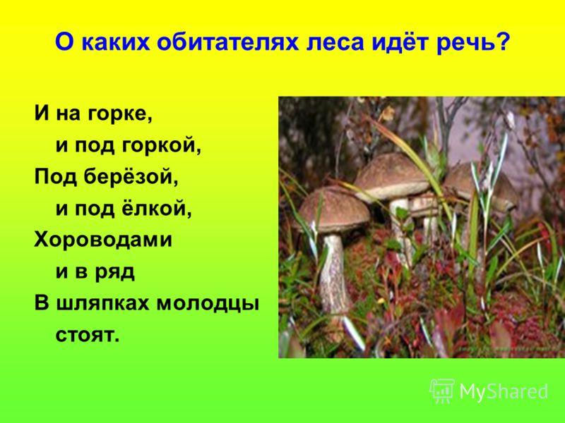 Презентация на тему жизнь леса лес