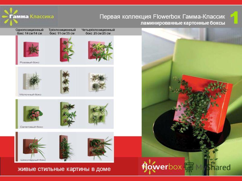 Эти принципы владели Тибо де Бриньи (Thibaut de Breyne) и Филиппом Тиссерандом (Philippe Tisserand), когда они задумали создать цветочные комплексы Flowerbox. Выходить за рамки привычного, создавать неожиданные решения, удивлять, привносить эстетику