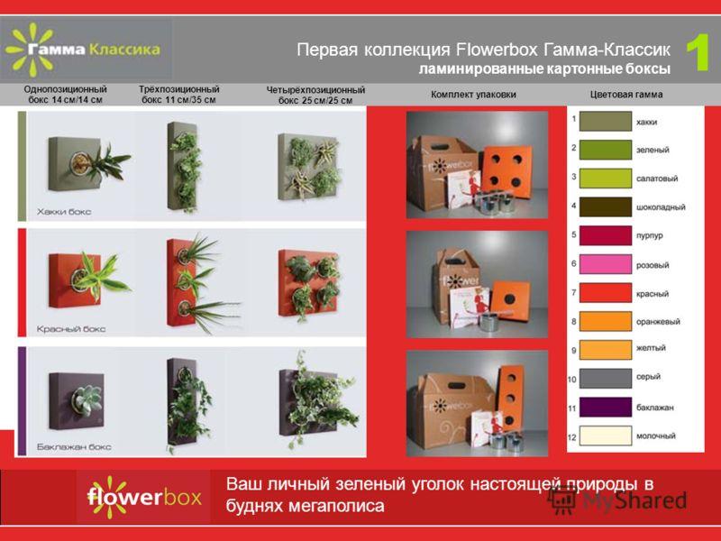 Первая коллекция Flowerbox Гамма-Классик ламинированные картонные боксы Однопозиционный бокс 14 см/14 см Трёхпозиционный бокс 11 см/35 см Четырёхпозиционный бокс 25 см/25 см Flowerbox - переверните свое представление о дизайне интерьера! 1