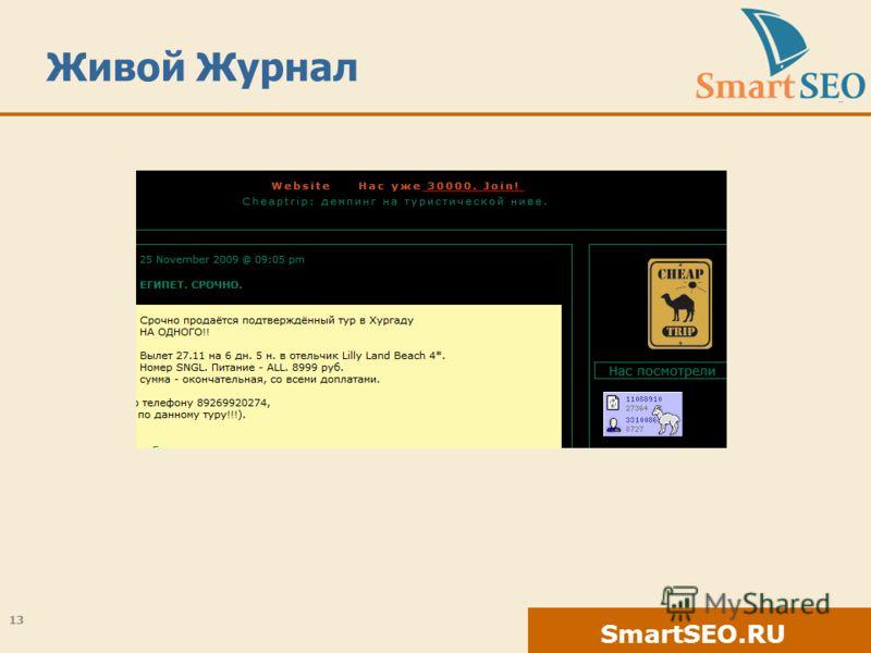 SmartSEO.RU Живой Журнал 13