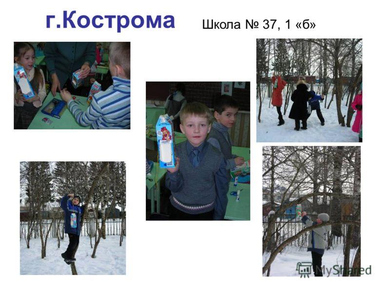 г.Кострома Школа 37, 1 «б»