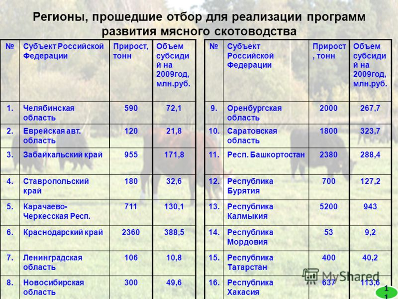 Регионы, прошедшие отбор для реализации программ развития мясного скотоводства Субъект Российской Федерации Прирост, тонн Объем субсиди й на 2009год, млн.руб. Субъект Российской Федерации Прирост, тонн Объем субсиди й на 2009год, млн.руб. 1.Челябинск