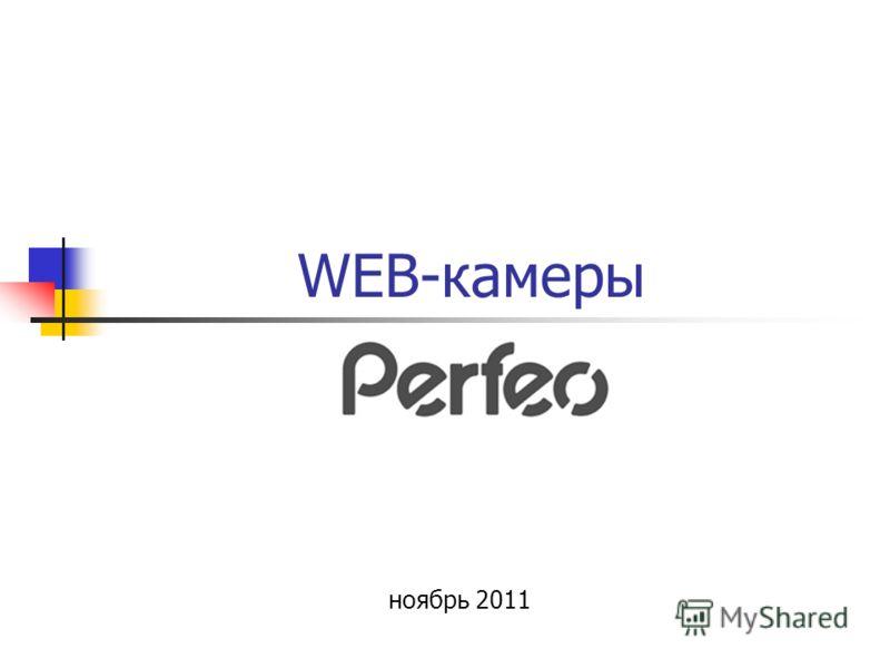 WEB-камеры ноябрь 2011