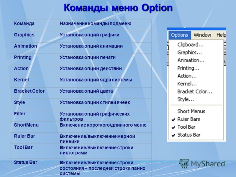 Команды меню Option КомандаНазначение команды подменю GraphicsУстановка опций графики AnimationУстановка опций анимации PrintingУстановка опций печати ActionУстановка опций действий KernelУстановка опций ядра системы Bracket ColorУстановка опций цвет