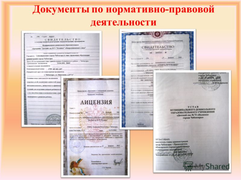Документы по нормативно-правовой деятельности