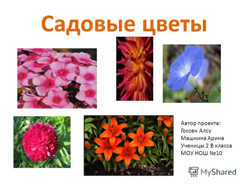 Садовые цветы Автор проекта: Госсен Алсу Машкина Арина Ученицы 2 В класса МОУ НОШ 10