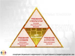 ЦЕЛИ ОБРАЗОВАНИЯ ТРЕБОВАНИЯ К РЕЗУЛЬТАТАМ освоения образовательных программ ТРЕБОВАНИЯ К УСЛОВИЯМ реализации образовательных программ ТРЕБОВАНИЯ К СТРУКТУРЕ образовательных программ КОНЦЕПЦИЯ СПЕЦИАЛЬНОГО ФЕДЕРАЛЬНОГО ГОСУДАРСТВЕННОГО СТАНДАРТА ДЛЯ Д