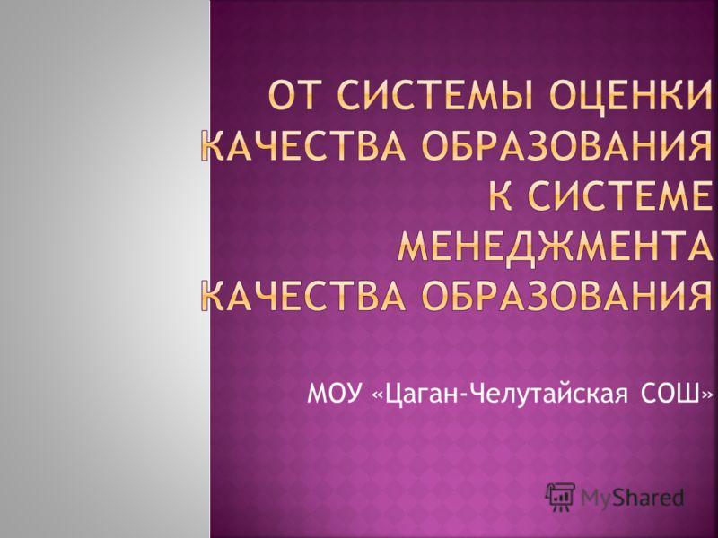 МОУ «Цаган-Челутайская СОШ»