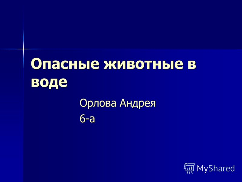 Опасные животные в воде Орлова Андрея 6-а