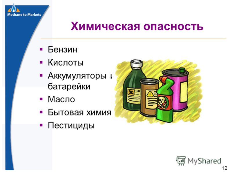 12 Химическая опасность Бензин Кислоты Аккумуляторы и батарейки Масло Бытовая химия Пестициды 12