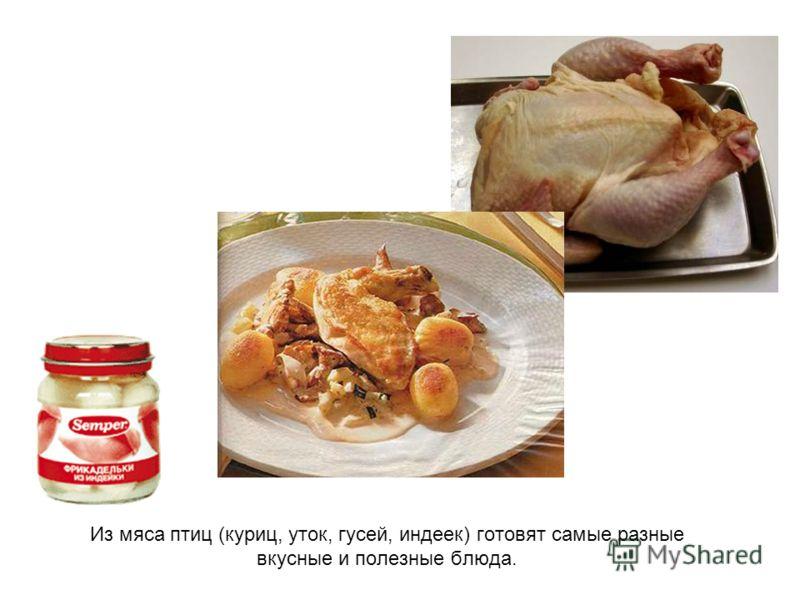 Из мяса птиц (куриц, уток, гусей, индеек) готовят самые разные вкусные и полезные блюда.