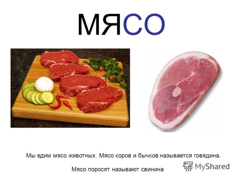 МЯСО Мы едим мясо животных. Мясо коров и бычков называется говядина. Мясо поросят называют свинина