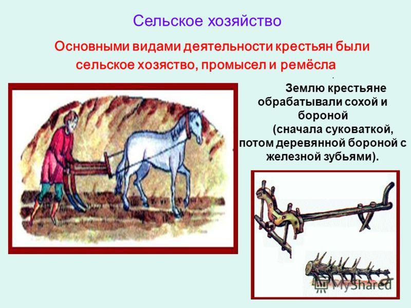 Основными видами деятельности крестьян были сельское хозяство, промысел и ремёсла. Землю крестьяне обрабатывали сохой и бороной (сначала суковаткой, потом деревянной бороной с железной зубьями). Сельское хозяйство