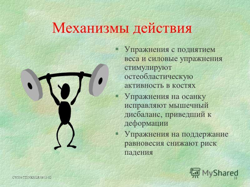 CW554/TTI/NKS/LR/06/13/02 38 Механизмы действия Упражнения с поднятием веса и силовые упражнения стимулируют остеобластическую активность в костях Упражнения на осанку исправляют мышечный дисбаланс, приведший к деформации Упражнения на поддержание ра