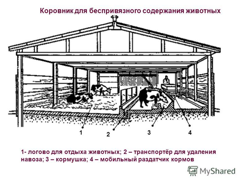 Коровник для беспривязного содержания животных 1 2 34 1- логово для отдыха животных; 2 – транспортёр для удаления навоза; 3 – кормушка; 4 – мобильный раздатчик кормов