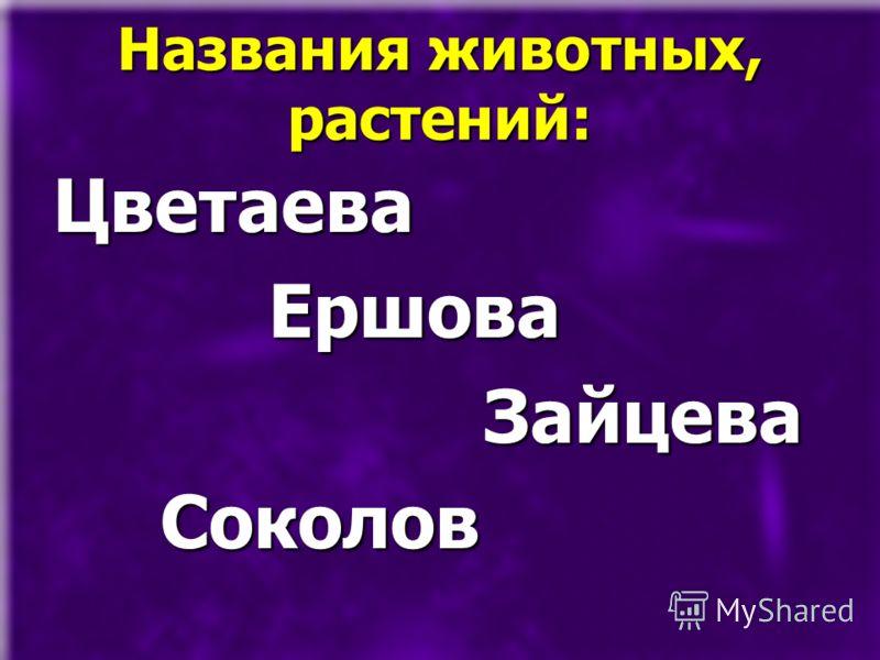 Названия животных, растений: Цветаева Ершова Ершова Зайцева Зайцева Соколов Соколов