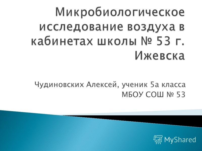 Чудиновских Алексей, ученик 5а класса МБОУ СОШ 53