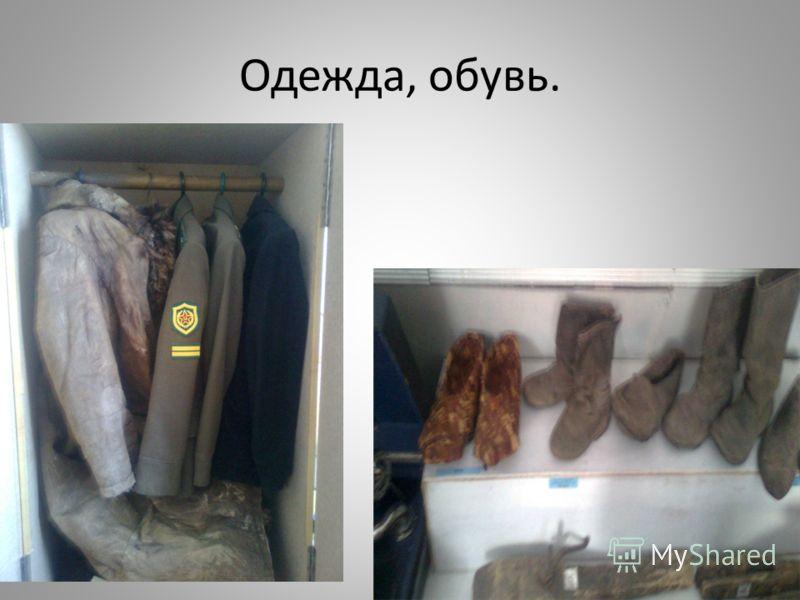 Одежда, обувь.