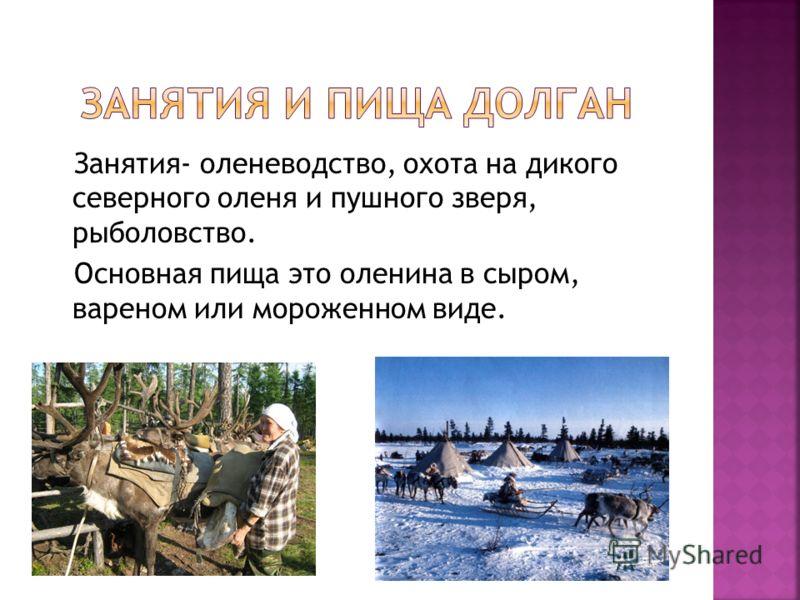 Занятия- оленеводство, охота на дикого северного оленя и пушного зверя, рыболовство. Основная пища это оленина в сыром, вареном или мороженном виде.