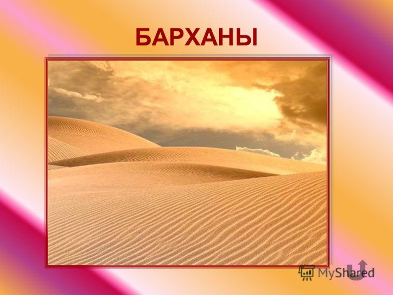 Песчаные наносные холмы.