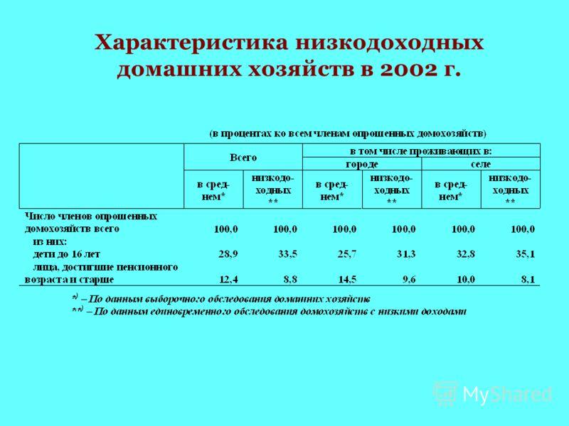 Характеристика низкодоходных домашних хозяйств в 2002 г.