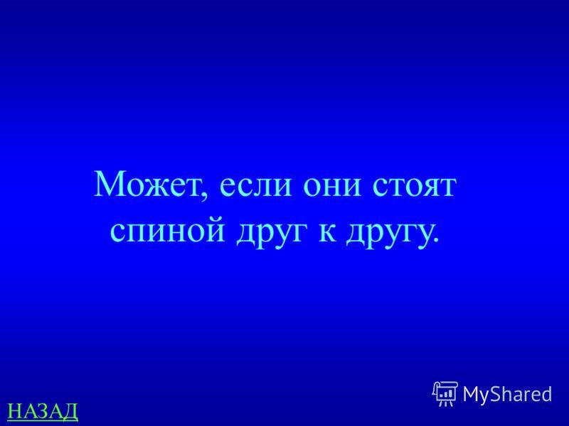 Математика 100 Может ли быть так, чтобы в одно и тоже время Иван стоял позади Ильи, а Илья позади Ивана? ответ