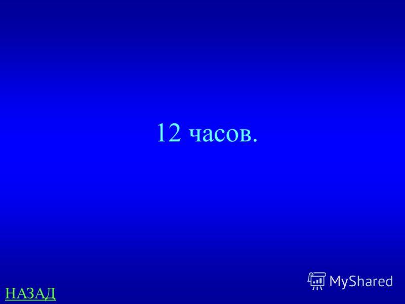 География 200 Если в Москве 5 часов утра, то сколько в Хабаровске, если он находится в 9 часовом поясе? ответ