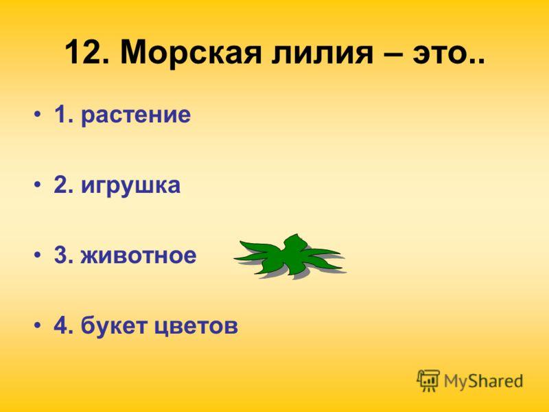 12. Морская лилия – это.. 1. растение 2. игрушка 3. животное 4. букет цветов