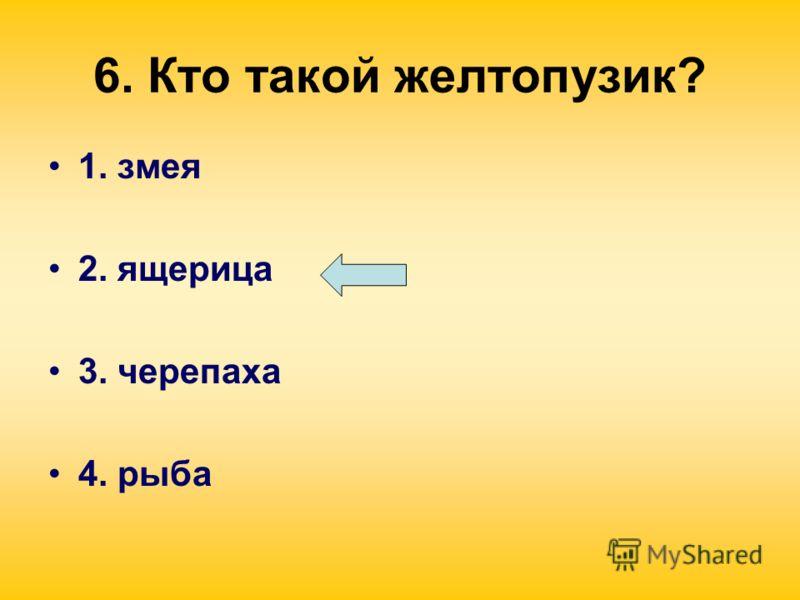 6. Кто такой желтопузик? 1. змея 2. ящерица 3. черепаха 4. рыба