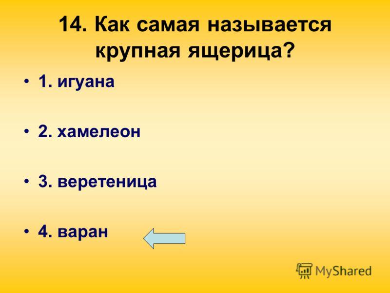 14. Как самая называется крупная ящерица? 1. игуана 2. хамелеон 3. веретеница 4. варан