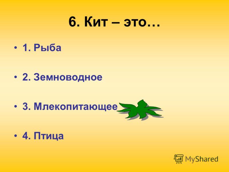6. Кит – это… 1. Рыба 2. Земноводное 3. Млекопитающее 4. Птица