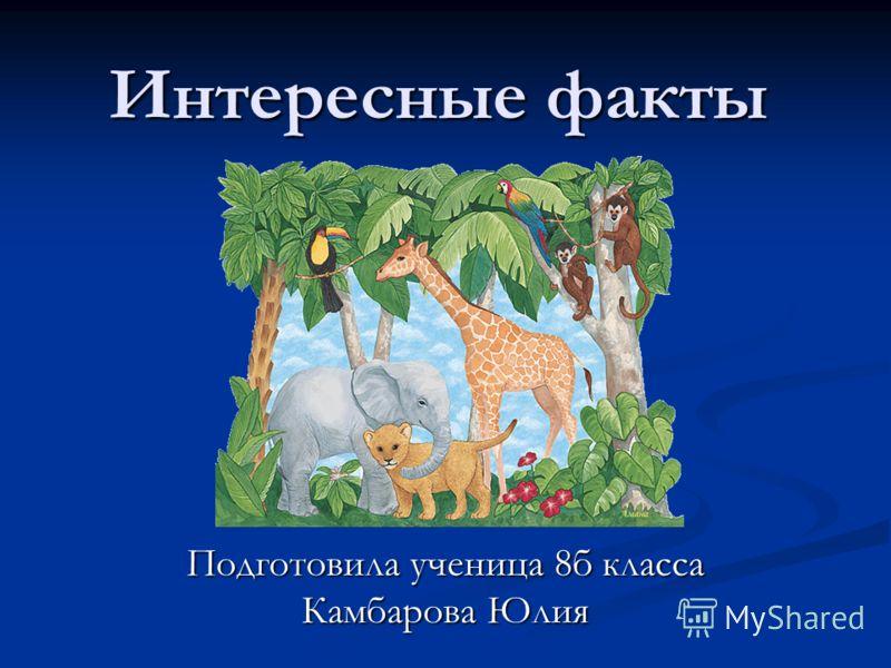 Интересные факты Подготовила ученица 8б класса Камбарова Юлия