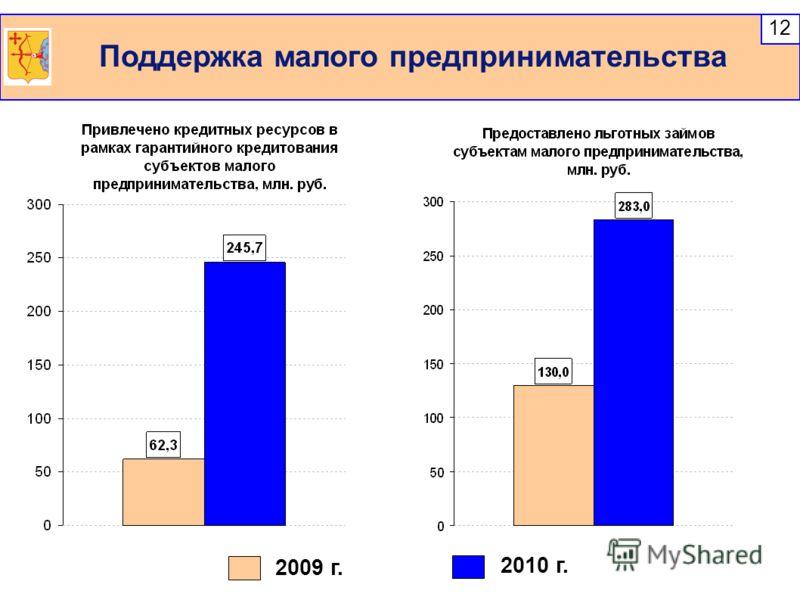 Поддержка малого предпринимательства 12 2009 г. 2010 г.
