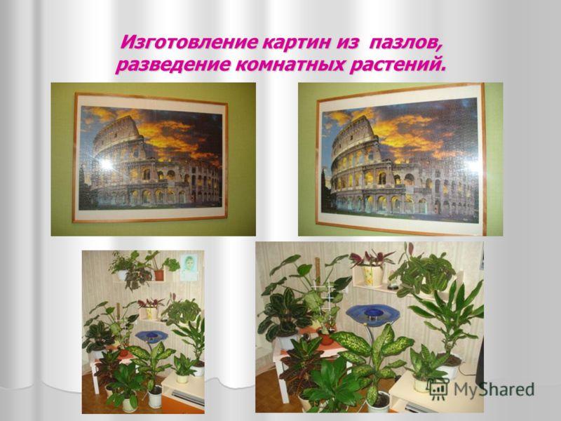 Путешествия по городам Черноморского побережья.