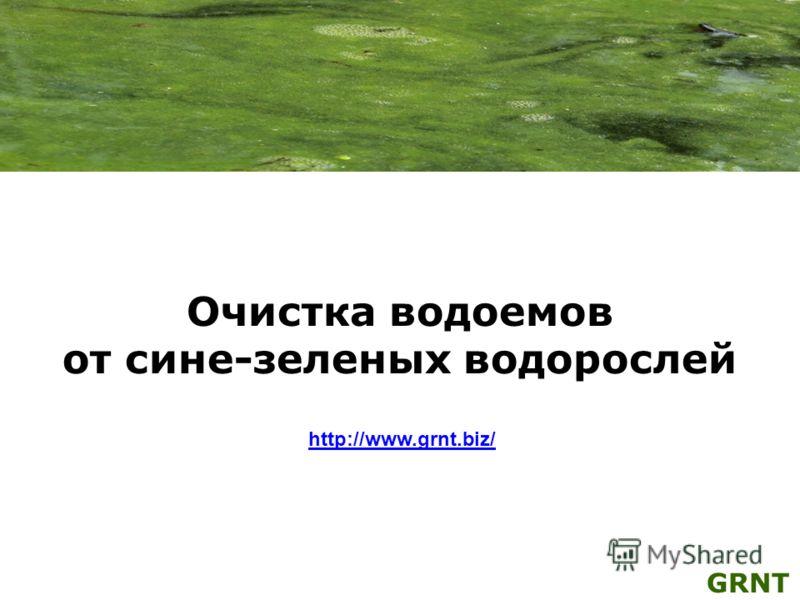 Очистка водоемов от сине-зеленых водорослей http://www.grnt.biz/ GRNT