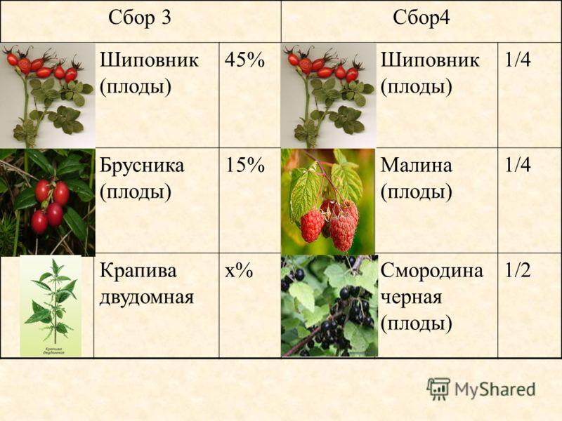 Сбор 3Сбор4 Шиповник (плоды) 45%Шиповник (плоды) 1/4 Брусника (плоды) 15%Малина (плоды) 1/4 Крапива двудомная х%Смородина черная (плоды) 1/2