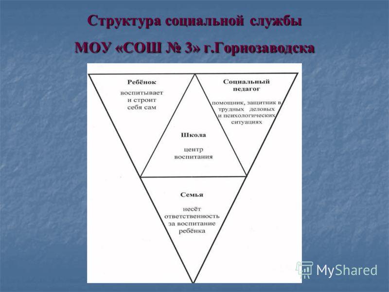 Структура социальной службы МОУ «СОШ 3» г.Горнозаводска