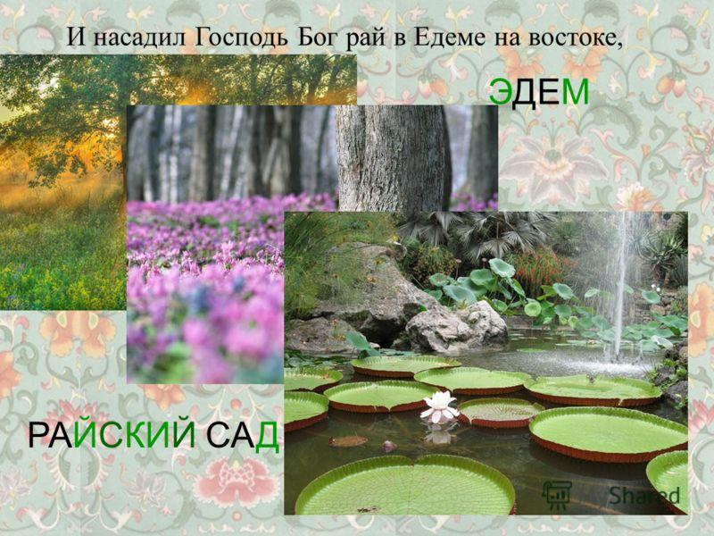 И насадил Господь Бог рай в Едеме на востоке, РАЙСКИЙ САД ЭДЕМ
