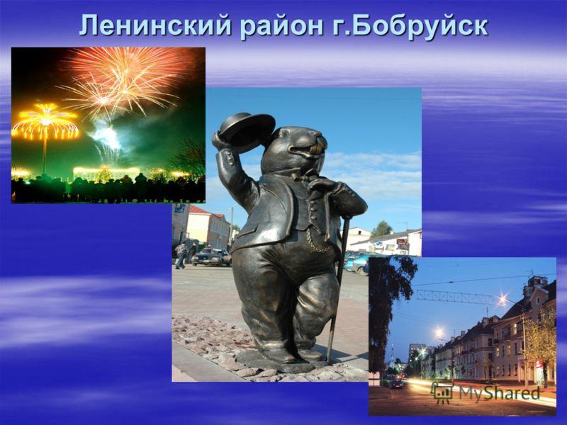 Ленинский район г.Бобруйск