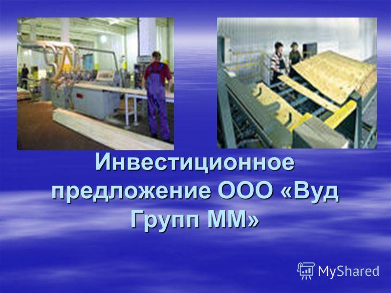 Инвестиционное предложение ООО «Вуд Групп ММ»