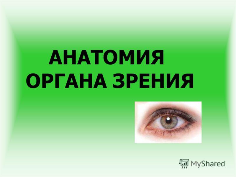 Презентацию По Офтальмологии