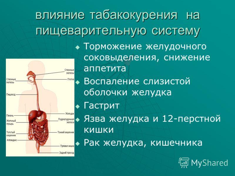 влияние табакокурения на пищеварительную систему Торможение желудочного соковыделения, снижение аппетита Воспаление слизистой оболочки желудка Гастрит Язва желудка и 12-перстной кишки Рак желудка, кишечника